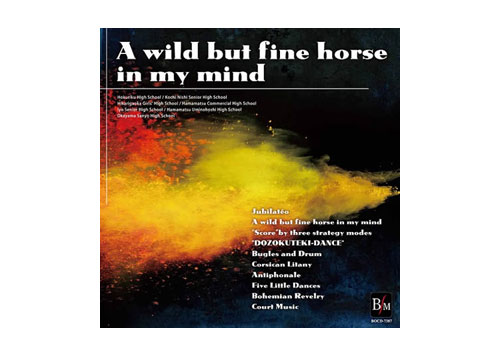 [CD] A wild but fine horse in my mind